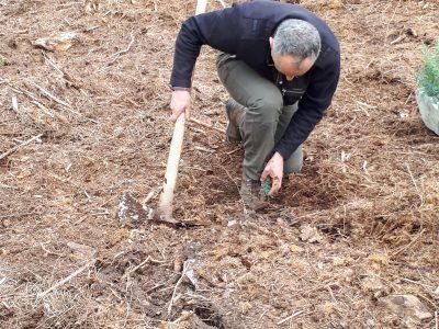Premières plantations des Arboretums le 8 avril 2019 à Bras