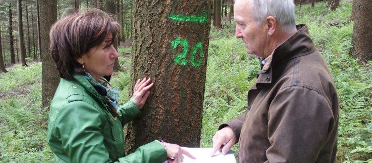Toute une équipe de forestiers volontaires expérimentés
