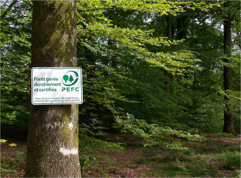 Arbre avec pancarte PEFC. Cette forêt est gérée durablement