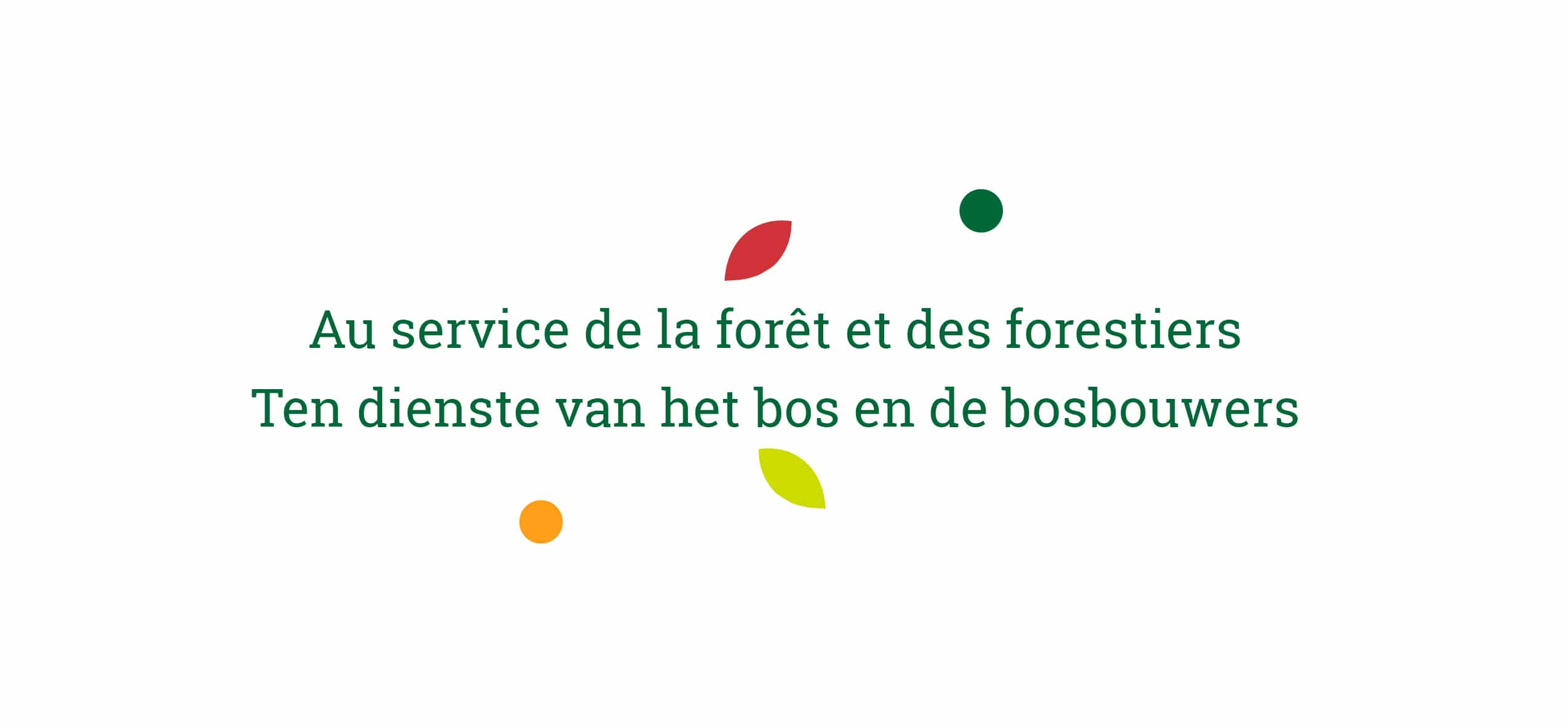 Baseline van SRFB-KBBM - Au service de la forêt et des forestiers - Ten dienst van het bos en de bosbouwers
