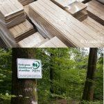 Journée filière forêt-bois : Visite de VicaBois et d'une forêt, certifiées PEFC