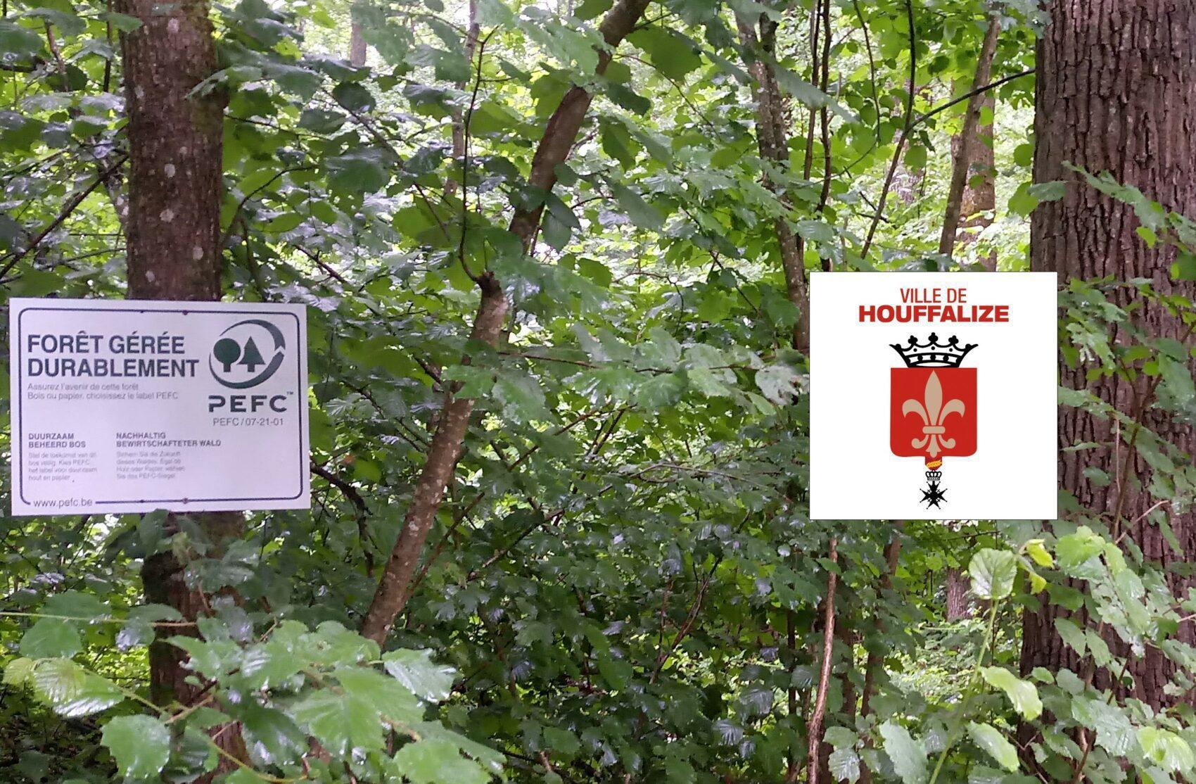Principes de gestion durable et certification PEFC des forêts de votre commune - Houffalize