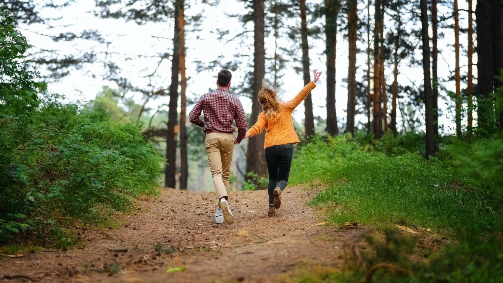 Balade guidée en forêt de Soignes – Groenendael